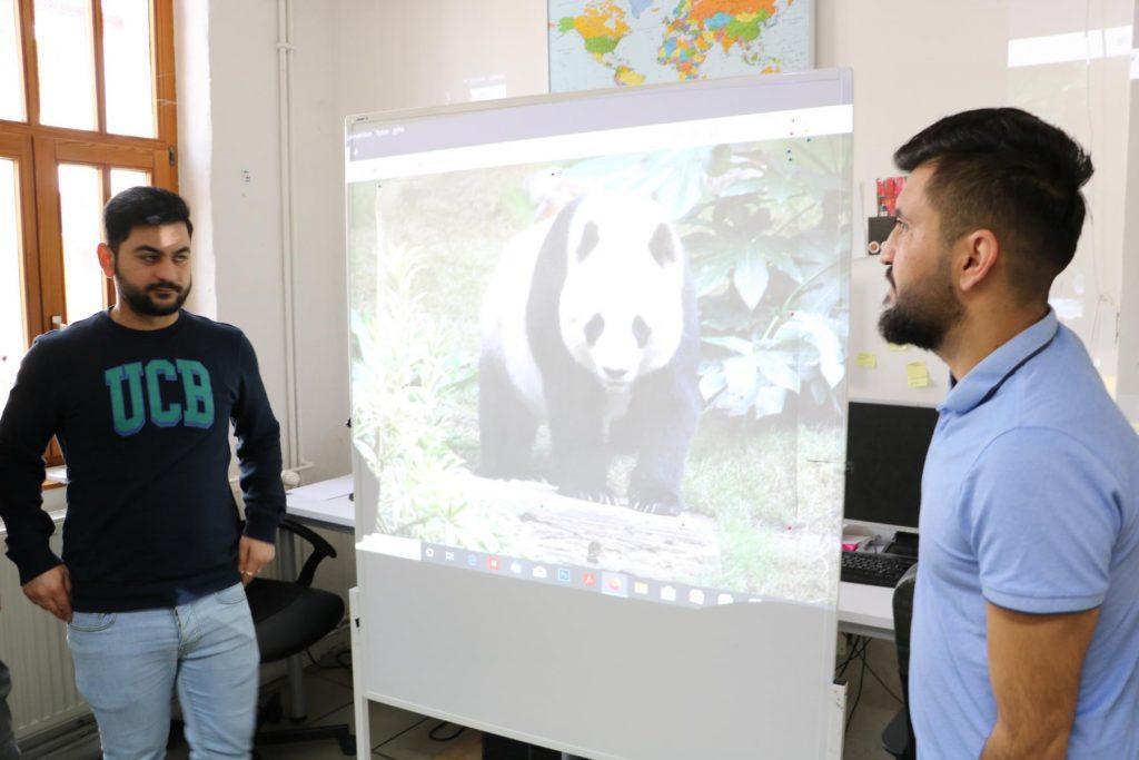 Auf einer Leinwand wird das Bild eines Pandabären projiziert.